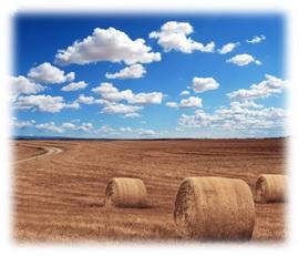 dotace na zemědělství